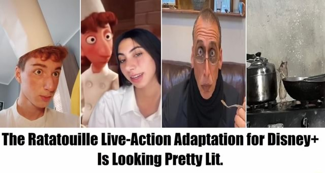 The Ratatouille Live Action Adaptation for Disney Is Looking Pretty Lit memes