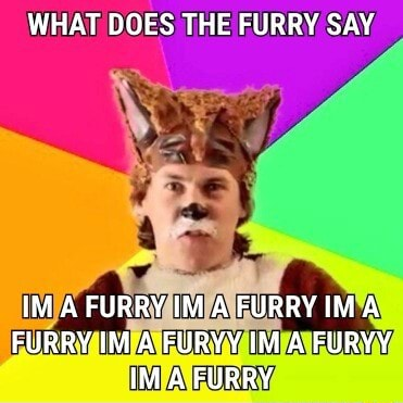 WHAT DOES THE FURRY SAY IM A FURRY IM A FURRY IMA FURRY IM A FURYY IM A FURYY A FURRY meme