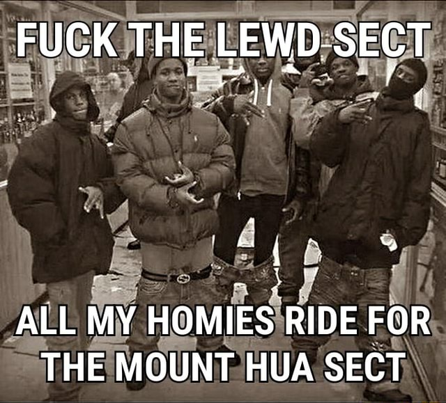 FUCK THE LEWD. SECT ALL MY HOMIES RIDE FOR THE MOUNT HUA SECT memes