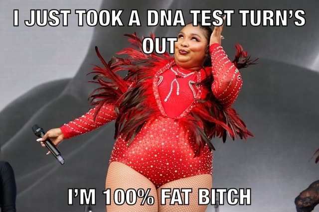 JUST TOOK A DNA TEST TURN'S OUT PM 100% FAT BITCH meme