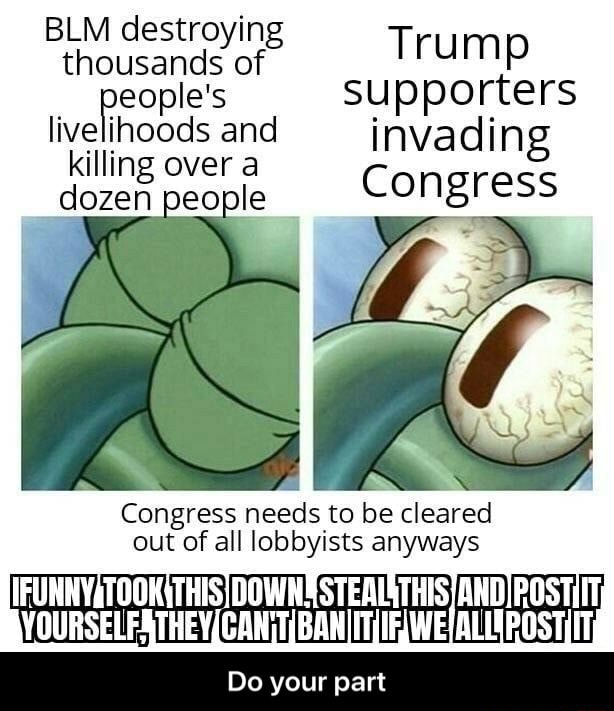 BLM destroying thousands of Trump supporters people's supporters livelinoods and invading killing over a dozen people Congress Congress needs to be cleared out of all lobbyists anyways DOWNS Do your part Do your part memes