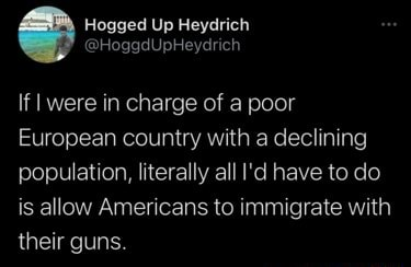 Ged Up If I were in charge of a poor European country with a declining population, literally all I'd have to do is allow Americans to immigrate with their guns memes