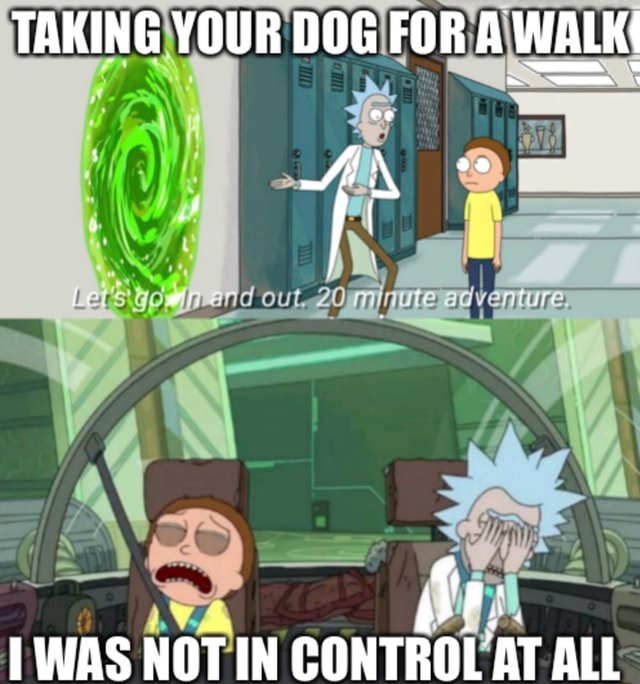 TAKING YOUR DOG FOR A WALK WAS NOT IN CONTROL AT ALL meme