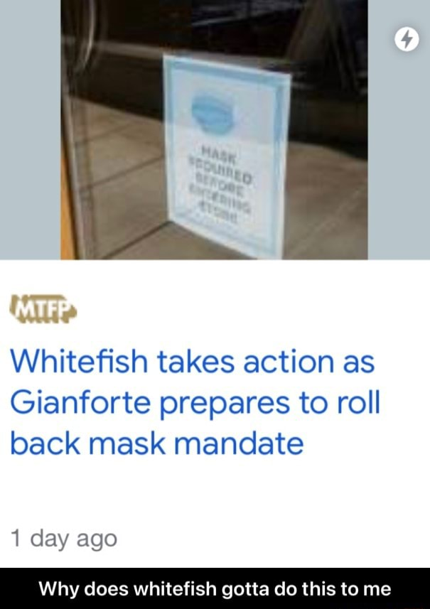 MTFE Whitefish takes action as Gianforte prepares to roll back mask mandate 1 day ago Why does whitefish gotta do this to me Why does whitefish gotta do this to me meme