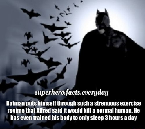 Facts everyday Batman puts himself through such a strenuous exercise regime that Alffed Said it would kill a normal human. He has even trained his body to only sleep 3 hours a day memes