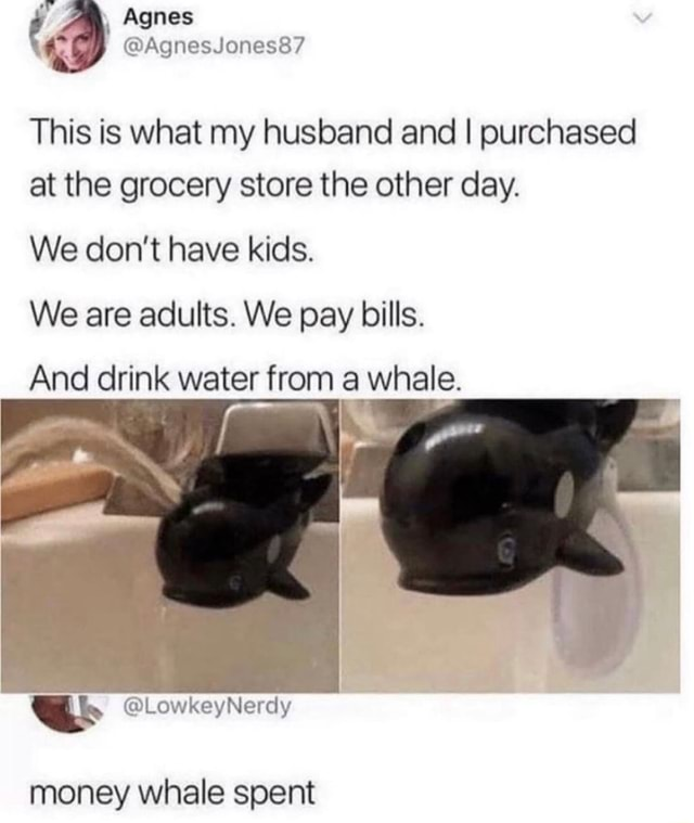 Agnes This is what my husband and I purchased at the grocery store the other day. We do not have kids. We are adults. We pay bills. And drink water from a whale. money whale spent memes