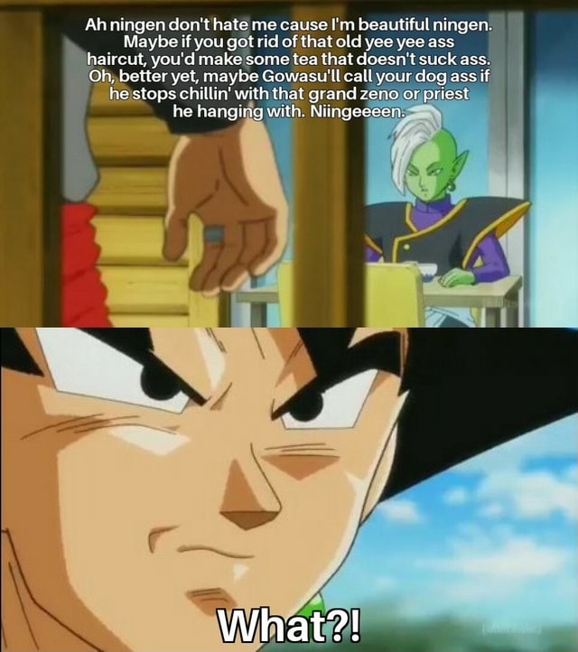 Ah ningen do not hate me cause I'm beautiful ningen. Maybe if you got rid of that old yee yee ass haircut, you'd make some tea that doesn't suck ass. Oh, better yet, maybe Gowasu'll call your dog ass if he stops chillin with that grand zeno or priest he hanging with. Niingeeeen. What memes