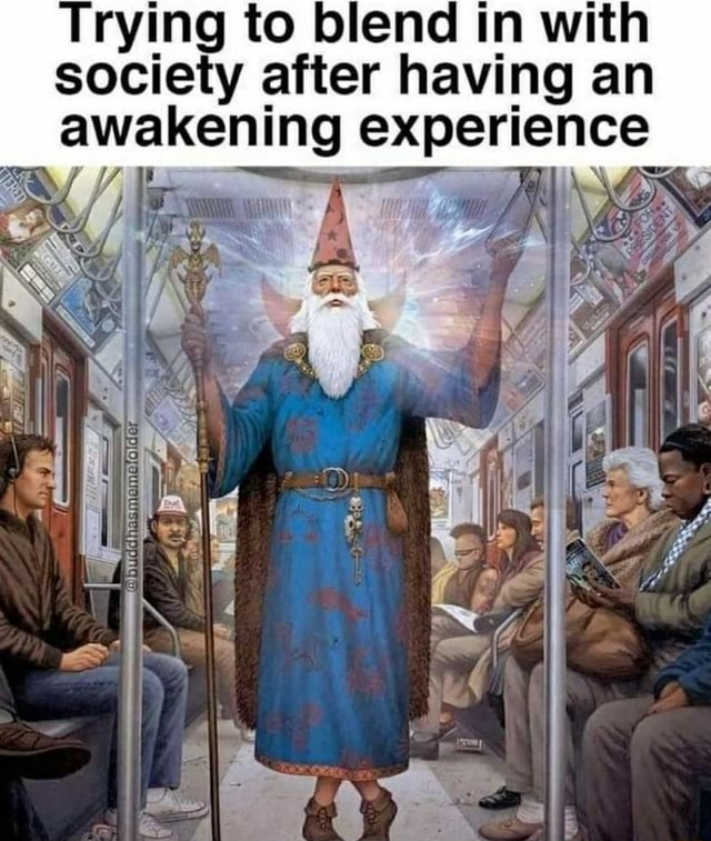 Trying to blend in with society after having an awakening experience memes