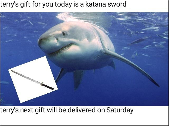 Erry's gift for you today is a katana sword erry's next gift will be delivered on Saturday memes