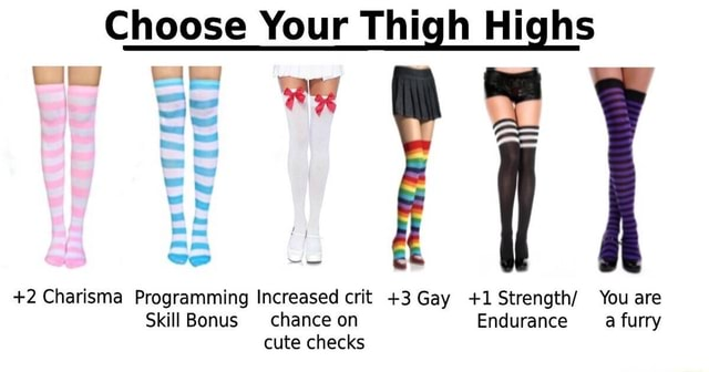 Choose Your Thigh Highs ww 2 Charisma Programming Increased crit 3 Gay 1Strength You are Skill Bonus chance on Endurance a furry cute checks memes