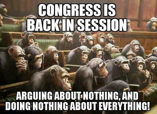 CONGRESS IS BACK IN SESSION ARGUING ABOUT AND DOING NOTHING ABOUT EVERYTHING memes