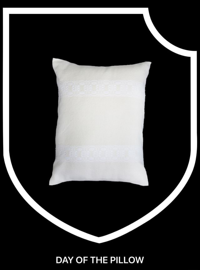 DAY OF THE PILLOW DAY OF THE PILLOW meme