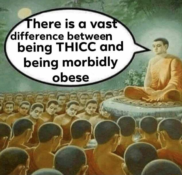 Here is being THICC and being morbidly obese memes