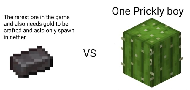 The rarest ore in the game and also needs gold to be crafted and aslo only spawn in nether VS One Prickly boy meme