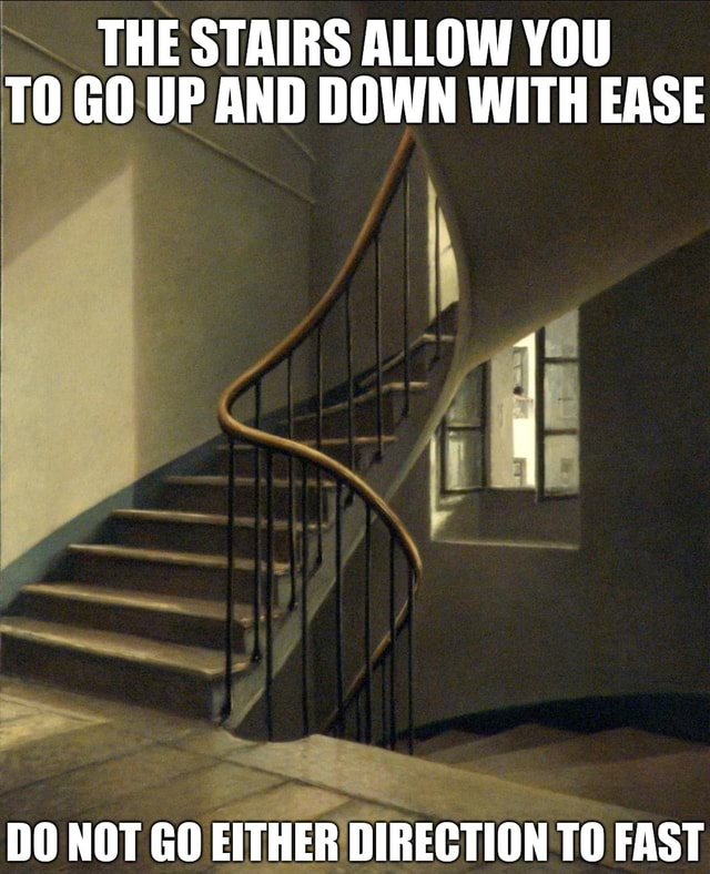 THE STAIRS ALLOW YOU TO GO UP AND DOWN WITH EASE DO NOT GO EITHER DIRECTION TO FAST memes