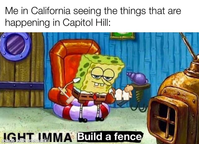 Me in California seeing the things that are happening in Capitol Hill Build a fence made with. mematic meme