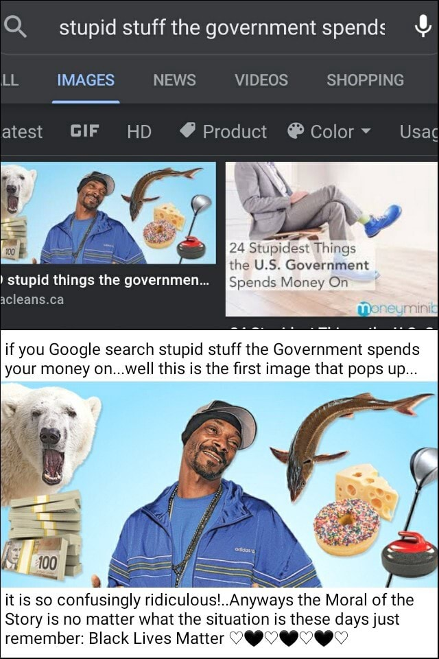 Q. stupid stuff the government spends  and  LL IMAGES NEWS SHOPPING atest GIF HO  Product Colory Usa aN 24 Stupidest Things the U.S. Government stupid things the governme Spends Money On acleans.ca if you Google search stupid stuff the Government spends your money on well this is the first image that pops up it is so confusingly ridiculous  Anyways the Moral of the Story is no matter what the situation is these days just remember Black Lives Matter QC memes