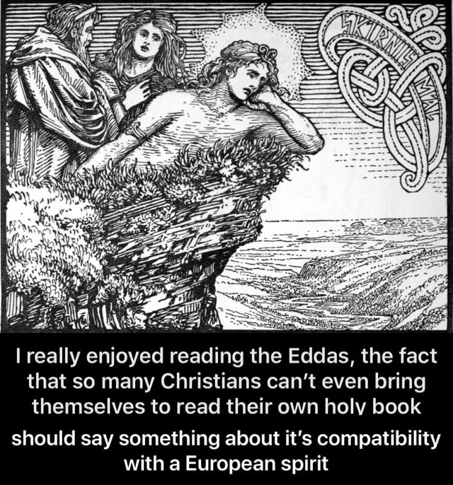 Really enjoyed reading the Eddas, the fact that so many Christians can not even bring themselves to read their own holy book should say something about it's compatibility with a European spirit should say something about it's compatibility with a European spirit memes