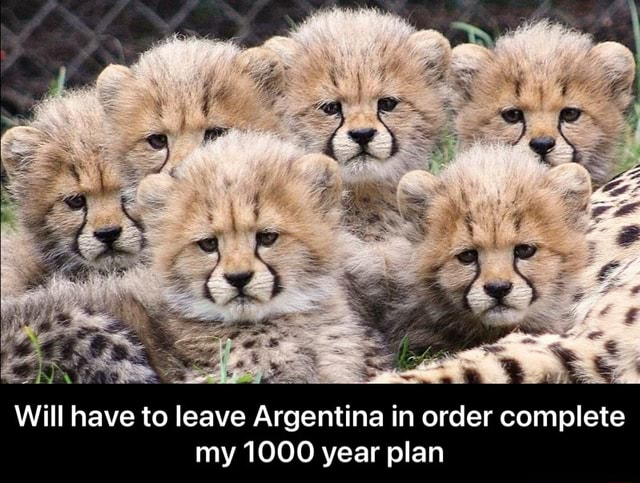 Will have to leave Argentina in order complete my 1000 year plan  Will have to leave Argentina in order complete my 1000 year plan memes