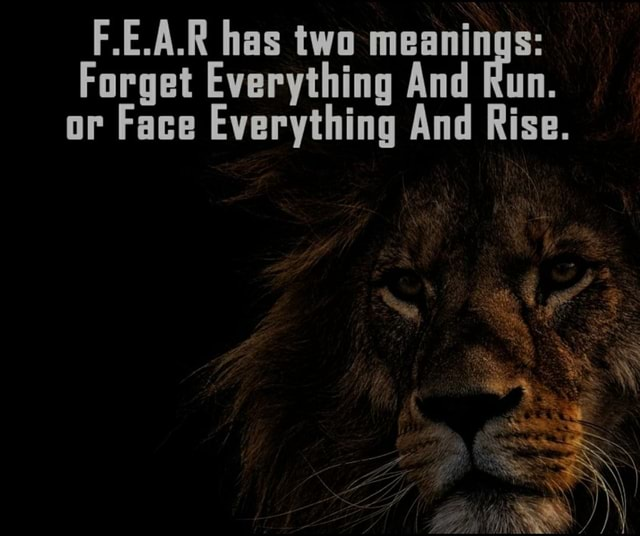 F.E.A.R has two meanings Forget Everything And Run. or Face Everything And Rise meme