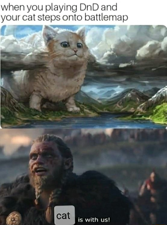 When you playing DnD and your cat steps onto battlemap cat is with us memes