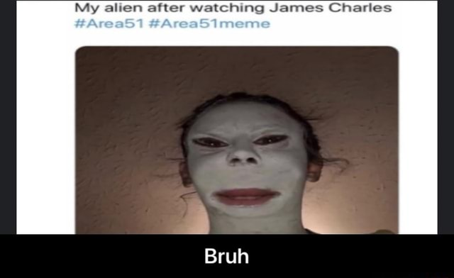 My alien after watching James Charles Bruh Bruh memes