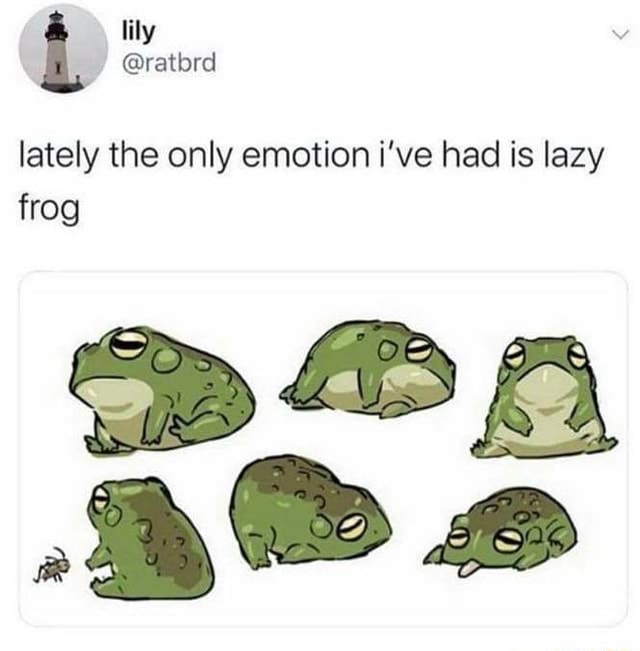 Sy lately the only emotion i've had is lazy frog memes
