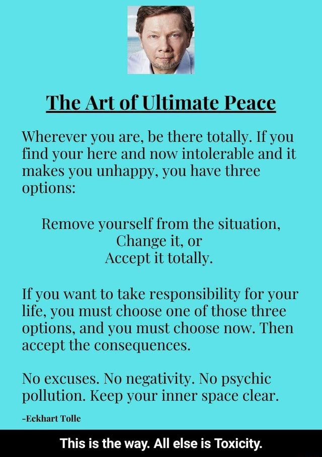 The Art of Ultimate Peace Wherever you are, be there totally. If you find your here and now intolerable and it makes you unhappy, you have three options Remove yourself from the situation, Change it, or Accept it totally. If you want to take responsibility for your life, you must choose one of those three options, and you must choose now. Then accept the consequences. No excuses. No negativity. No psychic pollution. Keep your inner space clear. Eckhart Tolle This is the way. All else is Toxicity.  This is the way. All else is Toxicity memes