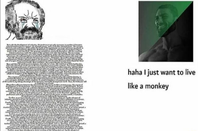 Tt the of haha I just want to live like a monkey memes
