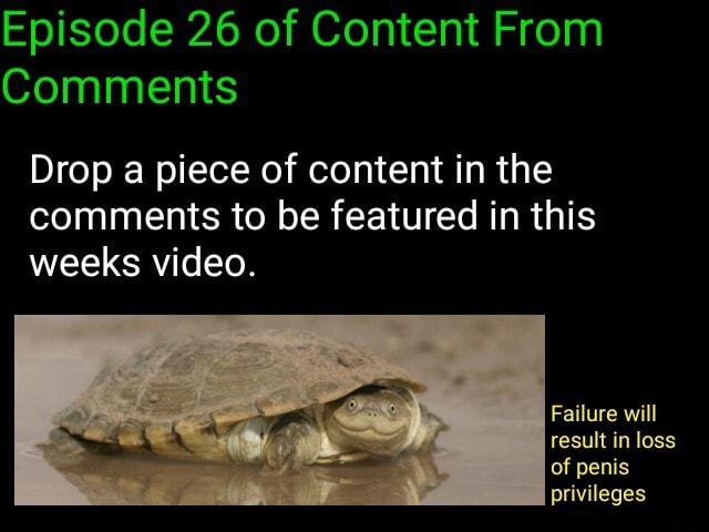 Episode 26 of Content From Comments Drop a piece of content in the comments to be featured in this weeks . Failure will result in loss of penis privileges memes