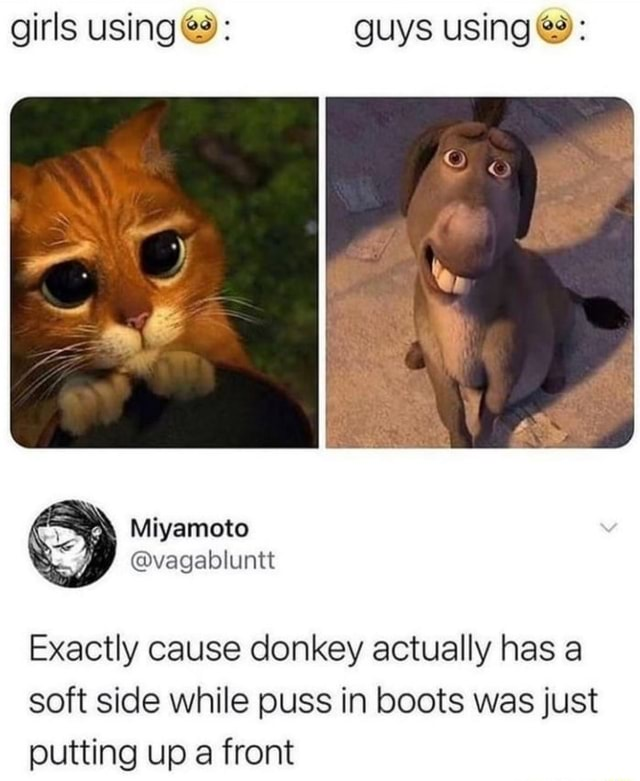 Girls using guys using Exactly cause donkey actually has a soft side while puss in boots was just putting up a front memes