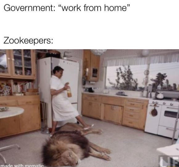 Government work from home Zookeepers made memes