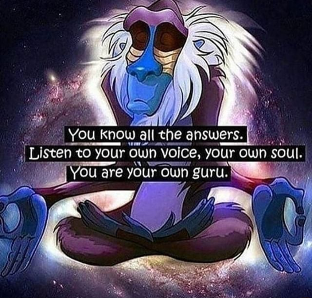 You know all ehe Listen to your own your owh Soul. You are your own guru meme