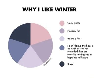 WHY LIKE WINTER Cozy quits reiey in Roaring fires tint much m not meme