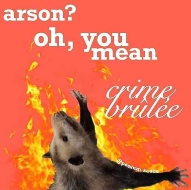 Arson oh, you mean memes