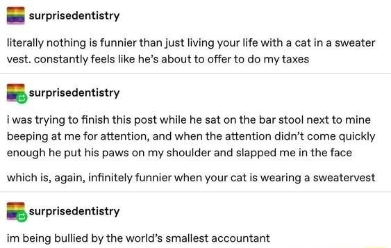 Literally nothing is funnier than just living your life with a cat ina sweater vest. constantly feels like he's about to offer to do my taxes BB surprisedentistry i was trying to finish this post while he sat on the bar stool next to mine beeping at me for attention, and when the attention didn't come quickly enough he put his paws on my shoulder and slapped me in the face which is, again, infinitely funnier when your cat is wearing a sweatervest BB surprisedentistry im being bullied by the world's smallest accountant memes