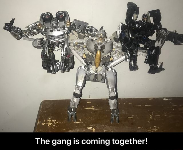 The gang is coming together  The gang is coming together memes