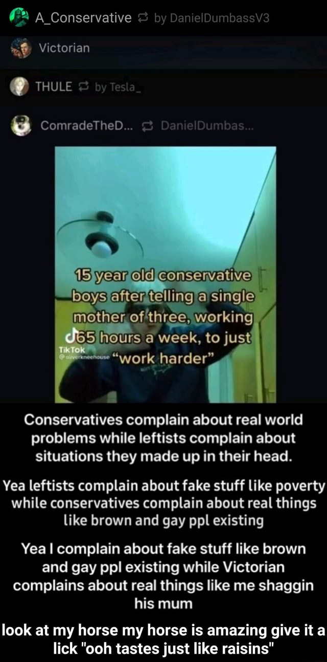 A Conservative Victorian  THULE ComradeThebD after telling a single mother of three, working hours a week, to just work harder . work Conservatives complain about real world problems while leftists complain about situations they made up in their head. Yea leftists complain about fake stuff like poverty while conservatives complain about real things like brown and gay ppl existing Yea I complain about fake stuff like brown and gay ppl existing while Victorian complains about real things like me shaggin his mum look at my horse my horse is amazing give it a lick ooh tastes just like raisins  look at my horse my horse is amazing give it a lick ooh tastes just like raisins memes