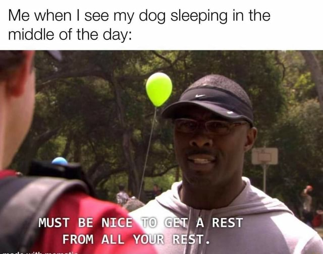Me when I see my dog sleeping in the middle of the day AS MUST BE NIG To A REST FROM ALL YOUR R memes