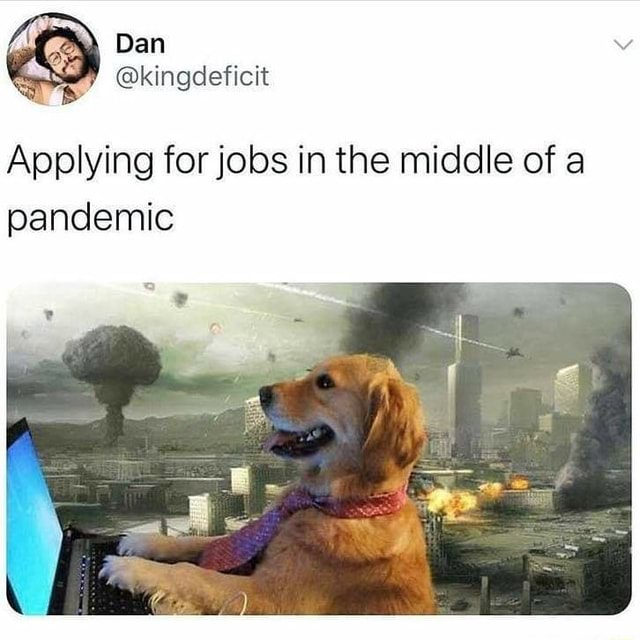 Ban Applying for jobs in the middle of a pandemic memes