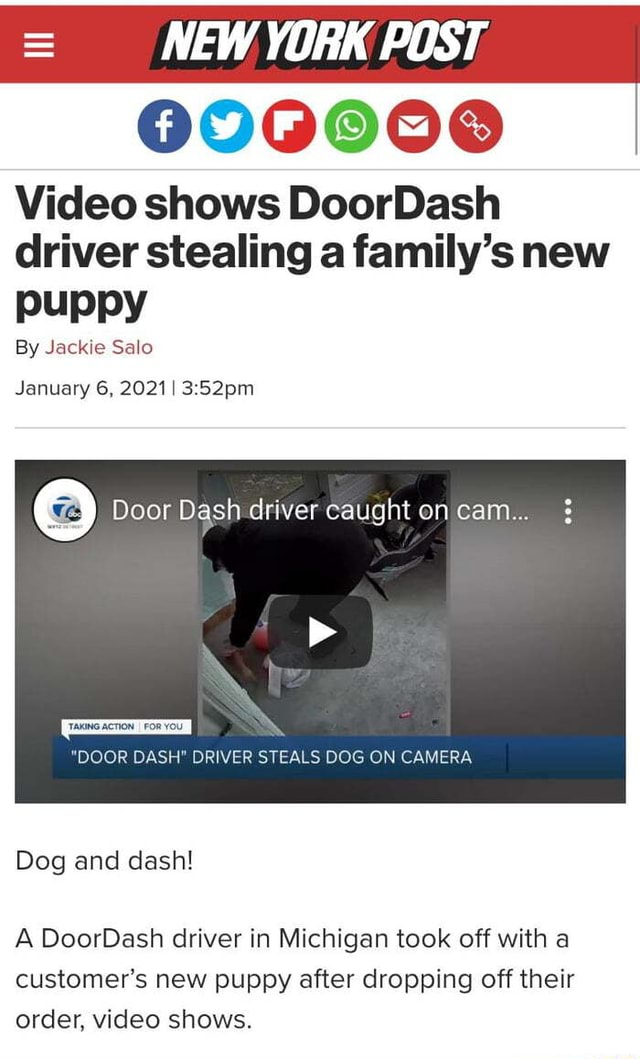NEW YORK POST 0900080 shows DoorDash driver stealing a family's new puppy By Jackie Salo January 6, 2021 Door Dash driver caught on cam TTAKING ACTION I FOR YOU DOOR DASH DRIVER STEALS DOG ON CAMERA Dog and dash A DoorDash driver in Michigan took off with a customer's new puppy after dropping off their order, shows meme