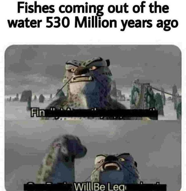 Fishes coming out of the water 530 Million years ago memes