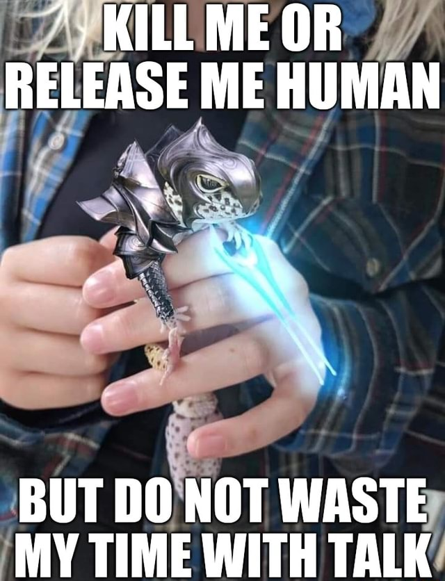 KILL ME OR RELEASE ME HUMAN BUT DO NOT WASTE MY TIME WITH TALK meme