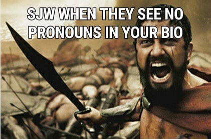 THEY SEE NO PRONOUNS IN YOUR BIO memes
