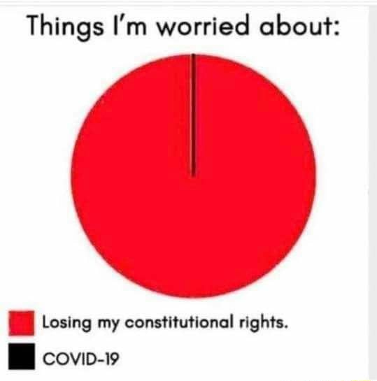 Things I'm worried about Losing my constitutional rights. covip 19 meme