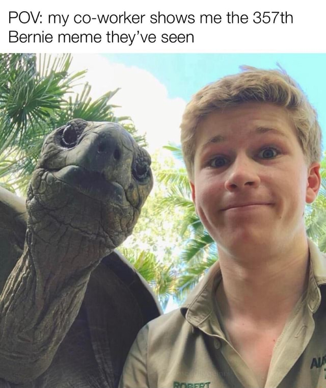 POV my co worker shows me the 357th Bernie meme they've seen