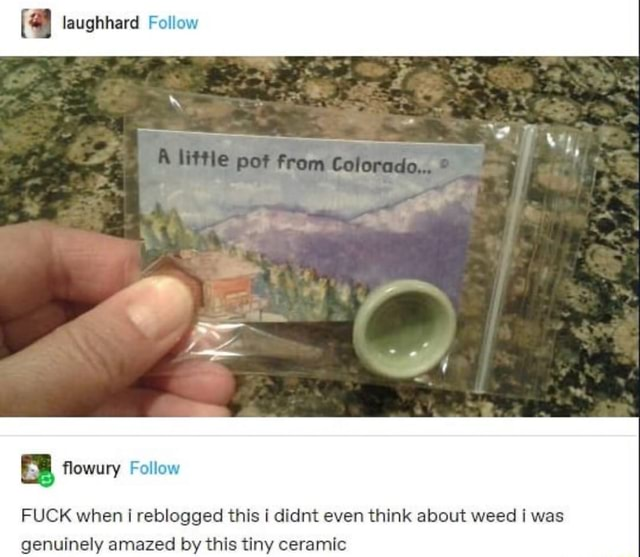 Laughhard Follow FUCK when i reblogged this i didnt even think about weed i was genuinely amazed by this tiny ceramic memes