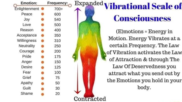 Emotion Enlightenment Peace Joy Love Reason Acceptance Willingness Neutrality Courage Pride Anger Desire Fear Grief Apathy Guilt Shame Frequency 700 600 540 500 400 350 310 250 200 175 150 125 100 75 50 30 20 Expanded Vibrational Scale of Consciousness Energy in Motion. Energy Vibrates at a certain Frequency. The Law of of Vibration activates the Law of Attraction and through The Law Of Deservedness you attract what you send out by the Emotions you hold in your body. Con ted meme