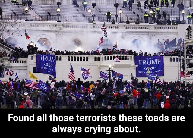 Via Found all those terrorists these toads are always crying about. Found all those terrorists these toads are always crying about meme