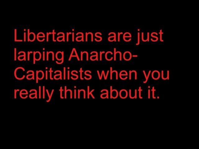 Libertarians are just larping Anarcho Capitalists when you really think about it memes